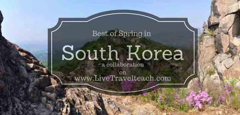 Best Places for Spring in Korea